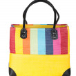 Royalty-Free Stock Photo: Colorful beach bag