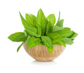 Wood bowl with fresh mint — Stock Photo
