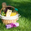 Outdoor picnic basket on green lawn — Stock Photo