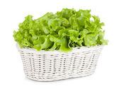 Lettuce in basket — Stock Photo