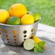 Fresh ripe citruses in colander — Stock Photo