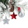 Stock Photo: Fir tree branch with christmas decor covered with snow