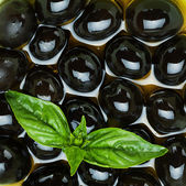 Basilic et olives noires — Photo