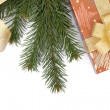 Christmas gift box and fir tree — Stock Photo