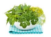 świeże zioła w misce — Zdjęcie stockowe