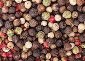 Peppercorn — Stok fotoğraf