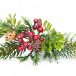 Christmas tree branch with holly decor — Stockfoto