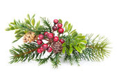 Christmas tree branch with holly decor — Stock Photo