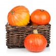 Ripe small pumpkins — Stock Photo