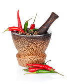 Mortar and pestle with red hot chili pepper and peppercorn — Foto Stock
