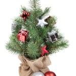 Small christmas tree — Stock Photo #36828213