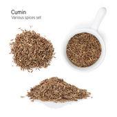 Cumin — Stock Photo