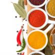 Various spices selection — Stock Photo #40075559