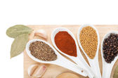 Colorful herbs and spices selection — Stock Photo
