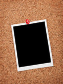 Blank instant photo frame — Stock Photo