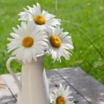 Fresh garden chamomile bouquet — Stock Photo