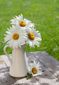 Fresh garden chamomile bouquet — Stock Photo