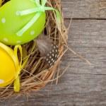 Easter eggs nest — Stock Photo #44567195