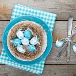 Easter eggs nest on plate — Stock Photo #44567291