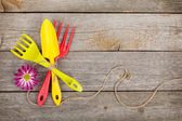 Garden tools with flower — Stock Photo