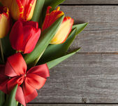 Tulips bouquet with ribbon and bow — Stock Photo