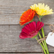 Three colorful gerbera flowers — Stock Photo