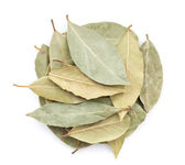 Aromatic bay leaves — Stock Photo