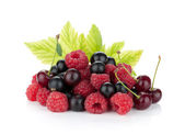 Black currants, raspberries and cherries — Stock Photo