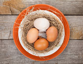 Eggs nest — Stock Photo