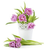 Pink tulips in flowerpot — Stock Photo