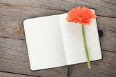блокнот и цветок — Стоковое фото
