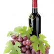 Red wine bottle and grapes — Stock Photo #49581167