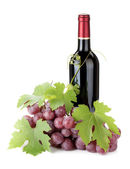 Red wine bottle and grapes — Stock Photo