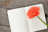 Blank notepad and orange gerbera — Stock Photo