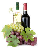 Two wine bottles and grapes — Stock Photo