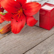 Lily and gift box — Stock Photo #49994113