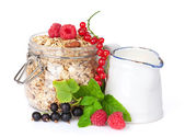 Healty breakfast with muesli, berries and milk — Stock Photo