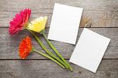 Gerbera flowers and photos — Stock Photo