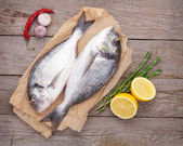 Fresh dorado fish — Stock Photo