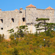 Nehaj castle in Senj, Croati(Dalmatia) — Foto Stock #14147625