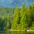 Strbske Pleso, beautiful lake in High Tatras mountains, Slovakia — Stock Photo