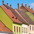 Red tiled roof of Budapest Old Town buildings — Stock Photo #14147878