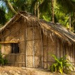 Straw hut on Paradise beach in Goa, India - Stock Photo