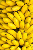Bunch of ripe bananas background — Photo