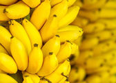 Bunch of ripe bananas background — Stock Photo