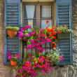 Vintage window with open wooden shutters and fresh flowers — Stock Photo #31803499