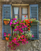 Vintage window with open wooden shutters and fresh flowers — Stock Photo