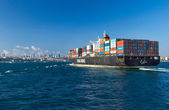 ISTANBUL, TURKEY - AUGUST 2: Container ship entering Bosphorus o — Stock Photo