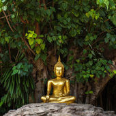 Golden Buddha statue in Wat Phan Tao temple in Chiang Mai — Stock Photo