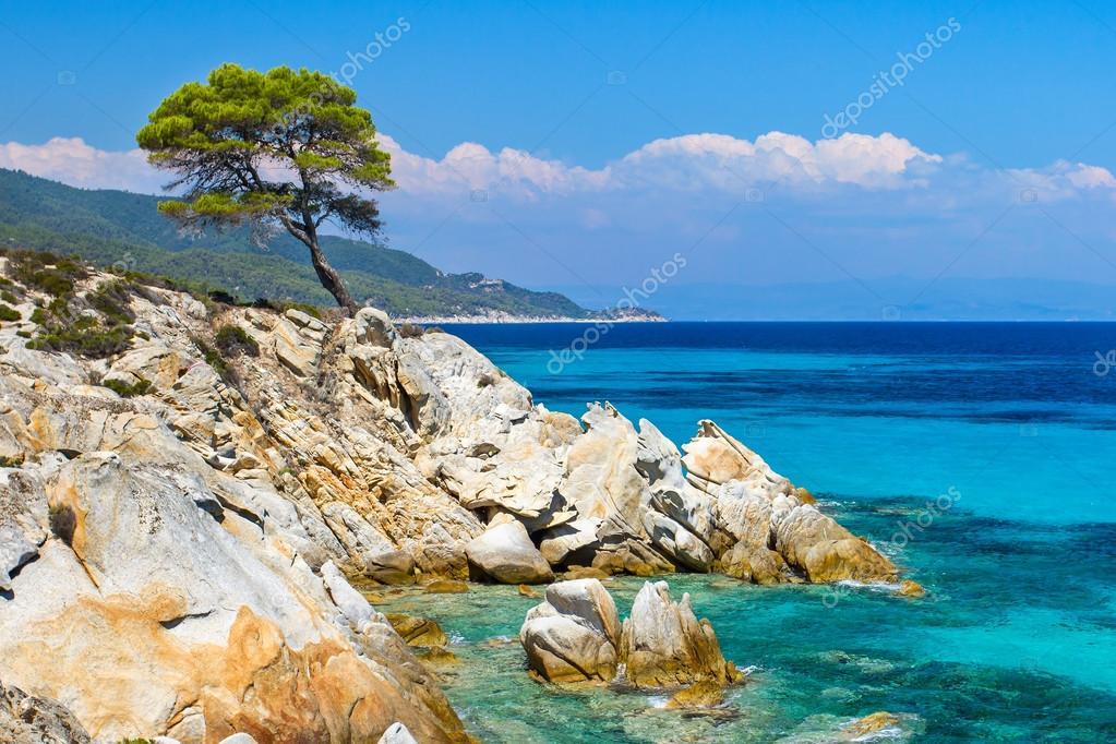 Недвижимость в греции в хвойном лесу